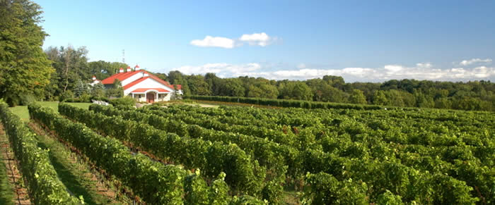 MICHIGAN Wineries - Google